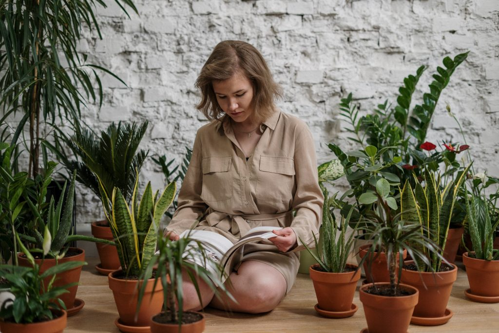 How to take care of Plants